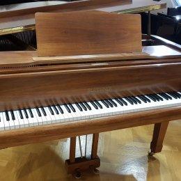 Blüthner 190 von 1979 in Holz matt