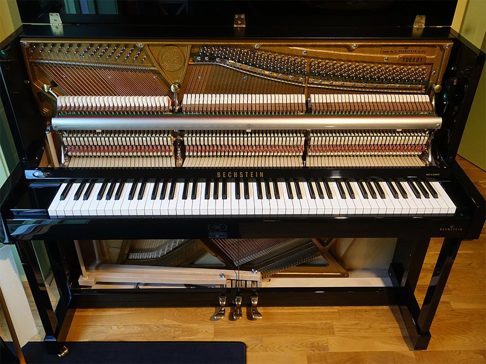 bechstein klavier academy a 116 gebraucht von h p. Black Bedroom Furniture Sets. Home Design Ideas